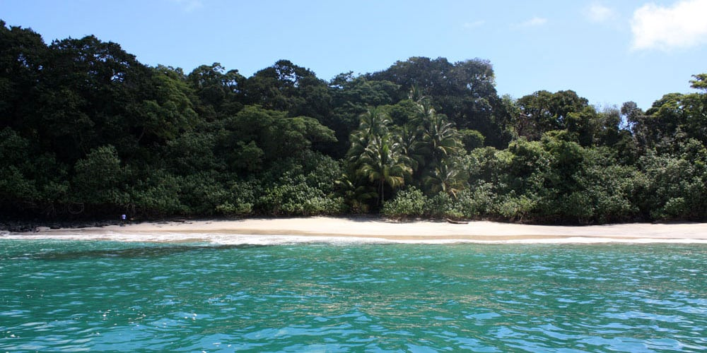 Panama Eco-Tours at Reel Inn in Panama